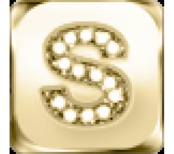 Lettera S  - argento dorato