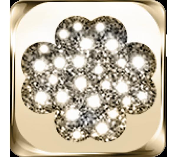 Quadrifoglio argento dorato